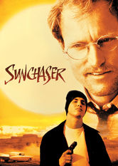Netflix: The Sunchaser | A successful surgeon is kidnapped by a dying patient for a road trip that becomes a Navajo-influenced spiritual quest for both men.